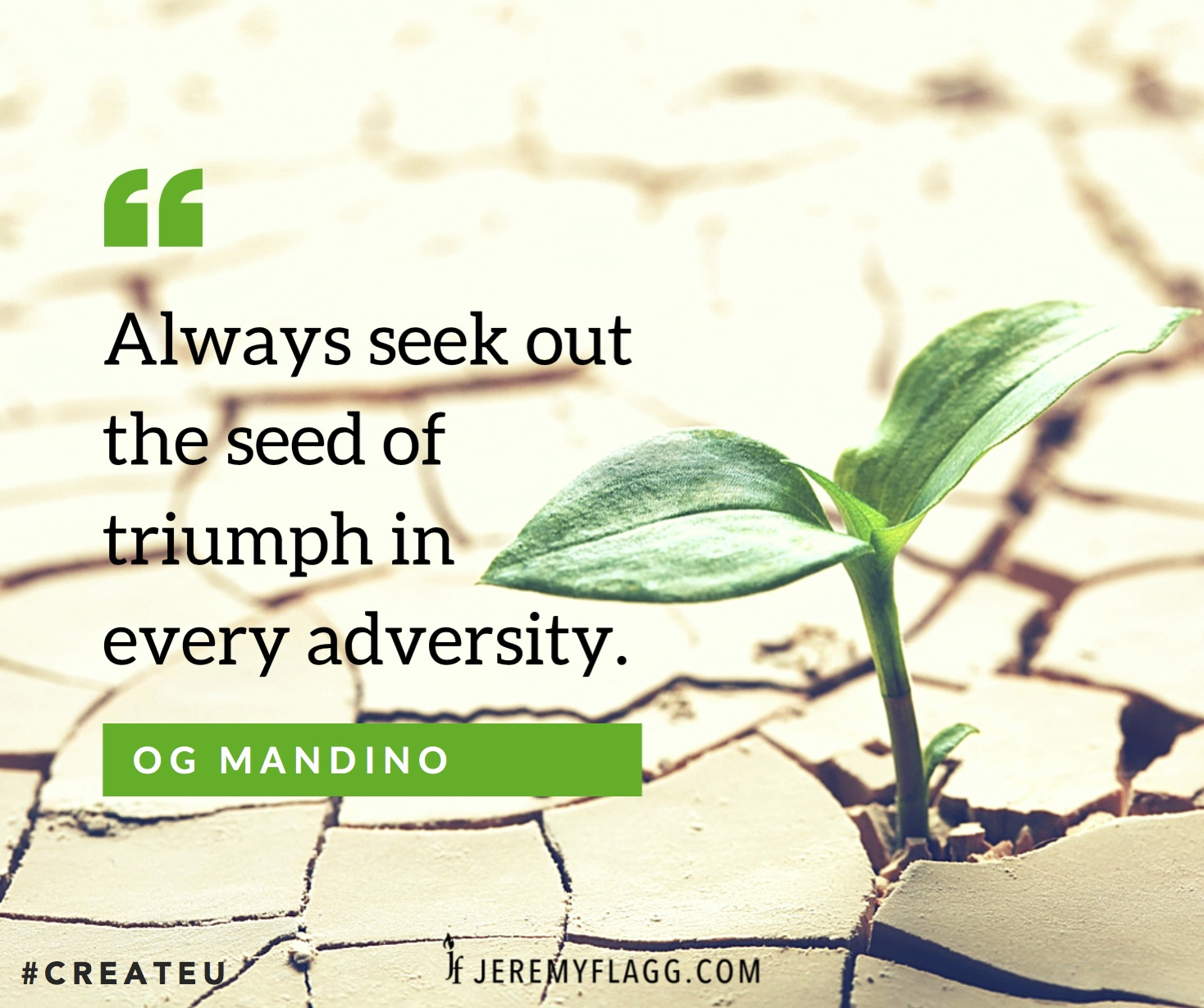Triumph-in-adversity-Og-Mandino-quote-FB